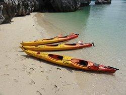 Blue Swimmer Kayaks
