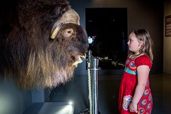 The Karst Museum, an experience for everyone. Photo: Simon Avsec