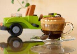Café Catimor