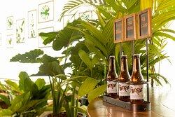 ibis Bière, cerveja artesanal desenvolvida exclusivamente para rede ibis, com lúpulo frances.