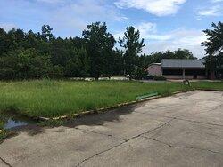 Tall grass!!