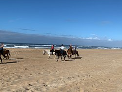 At the beach you may choose to walk or follow one of the guides to trot or canter.