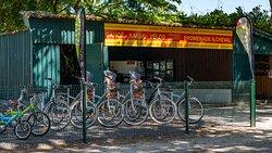 Location de vélos - Le Teich