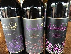 New Winery to Elgin, Arizona area