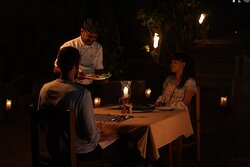 special occasion dining under the star light sky, a nice bush dinner