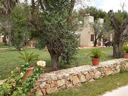 Ampi spazi: particolare del giardino del Borgo Console