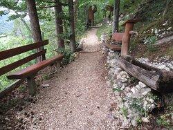 Sentier botanique de Vermes avec ses nombreux panneaux didactiques le long du chemin.