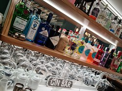 Plenty of Gins to choose from!
