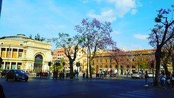 Il teatro Politeama- Palermo