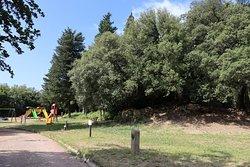 Parco Archeologico Enrico Fiumi