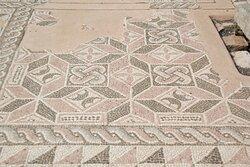 Mosaico della Domus