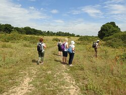 Our group looking for butterflies