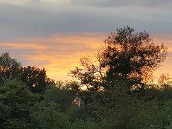 Sunset over Knepp