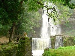 La cascade en face du Moulin