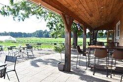 Farmer's Porch - Tangerini's Spring Street Farm