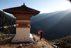 Bhutan Swallowtail Tours