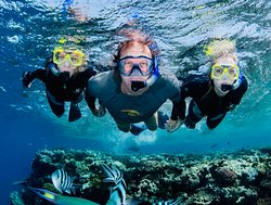Abc Snorkel Charters