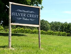 A view of the Gerald Smith Vineyard at Silver Crest Cellars