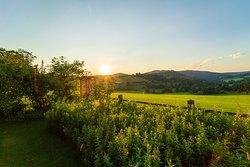 Der Sonnenuntergang vom Garten aus gesehen