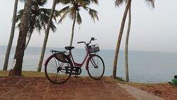 Kerala Dayz