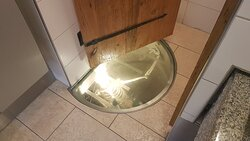 Ein Skelet in der öffentlichen Toilette