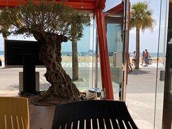 Restaurante Les Dunes Suites