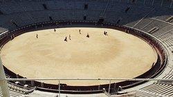 Visita guidata all'arena