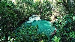 Em Tocantins, mais apropriadamente no Jalapão, você encontra uma das cachoeiras mais lindas do Brasil! Possuindo cânions, praias, grutas, passeios na floresta e claro, cachoeiras, o Jalapão ganha a denominação de paraíso natural que reserva milhares de atratividades. Nosso destaque aqui é a Cachoeira do Formiga Brasil, com águas cristalinas verdes, pôr-do-sol memorável, pequenas quedas d'água graciosas para o banho e diversão! foto: LOCVEL EXPEDIÇOES #jalapao #cachoeiradoformiga #cachoeira #TO