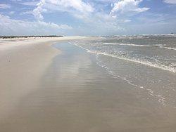 Dunes and jellies