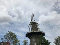 Molen De Valk Muhle mlyn Leiden