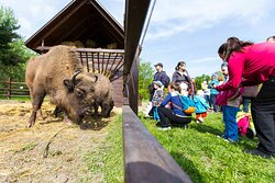 Korosvolgyi Zoo and Visitors' Centre