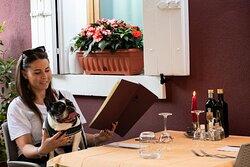 Dog-friendly: cani ammessi e benvenuti.