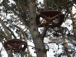 Éléments suspendus dans les arbres  face à la Côte de Granit Rose à Trégastel.
