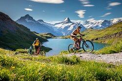 Backdoor Snowboard | Ski | Bike | Running Shop