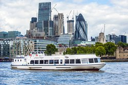 Thames River Sightseeing