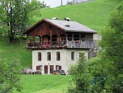 Belle case, tanto verde