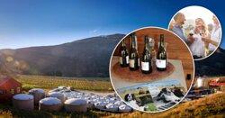 Alpine Wine Tours