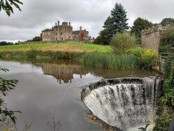 Ripley castle grounds