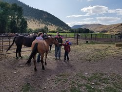 Meeting a horse for the first time.  Great trip for kids.