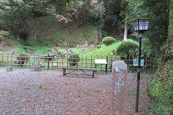興福山妙国寺 8