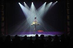 Performances at Faena Theater