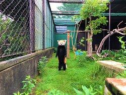 Tohoku Safari Park