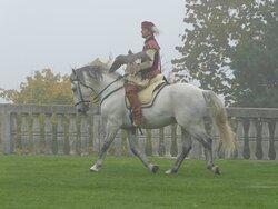 Historische Falknerei zu Pferd