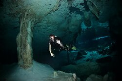 Cenote Diving with Diego