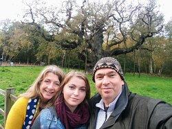 Visiting the Major Oak - Sherwood Forest, Notts. (28/Oct/20).