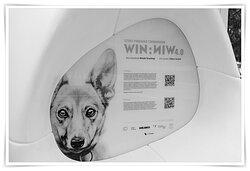 Wystawa WIN.WIN 4.0  Akcja charytatywna Michała Torzeckiego