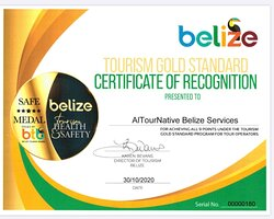 Altournative Belize Services