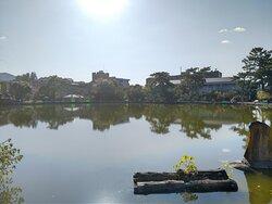 北側から望む猿沢池