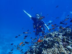 The best diving experience in Hurgada