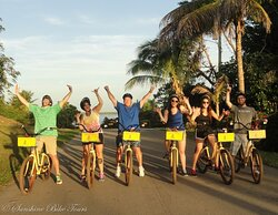 Sunshine Bike Tours
